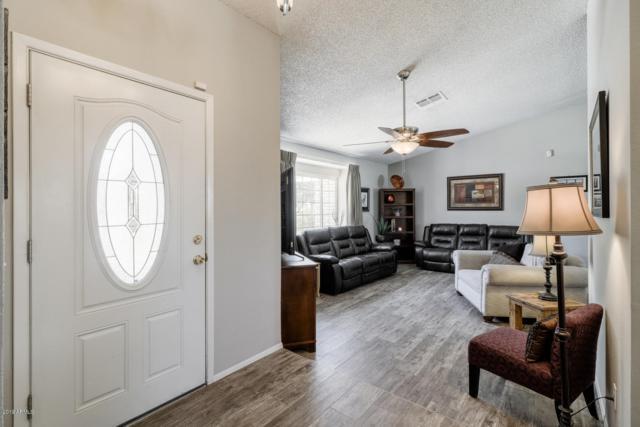 6120 W Grovers Avenue, Glendale, AZ 85308 (MLS #5865732) :: CC & Co. Real Estate Team