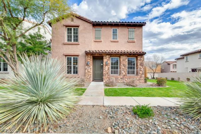 28950 N 124TH Avenue, Peoria, AZ 85383 (MLS #5865766) :: Lucido Agency
