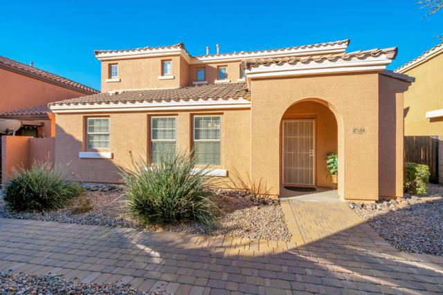 2534 E Megan Street, Gilbert, AZ 85295 (MLS #5865787) :: The Kenny Klaus Team