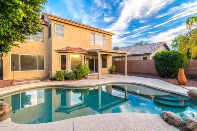 22424 N 19TH Way, Phoenix, AZ 85024 (MLS #5865834) :: The Laughton Team
