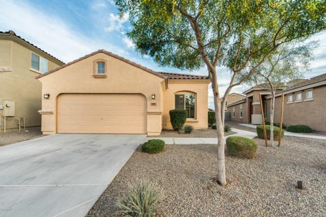 8882 W Hollywood Avenue, Peoria, AZ 85345 (MLS #5865847) :: The Bill and Cindy Flowers Team