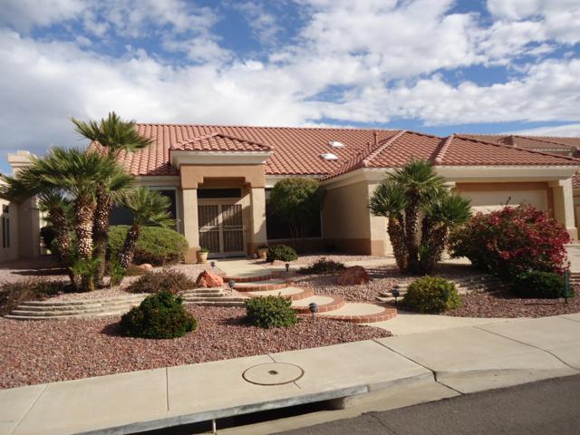 22513 N Robertson Drive S, Sun City West, AZ 85375 (MLS #5865857) :: Team Wilson Real Estate