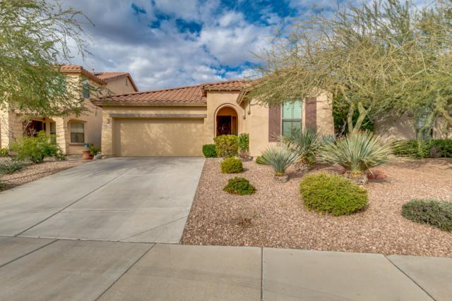 30118 N 121ST Lane, Peoria, AZ 85383 (MLS #5865874) :: RE/MAX Excalibur