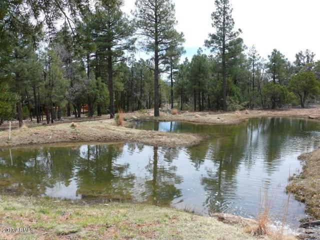 4441 W Shaggybark Road, Show Low, AZ 85901 (MLS #5865876) :: Team Wilson Real Estate