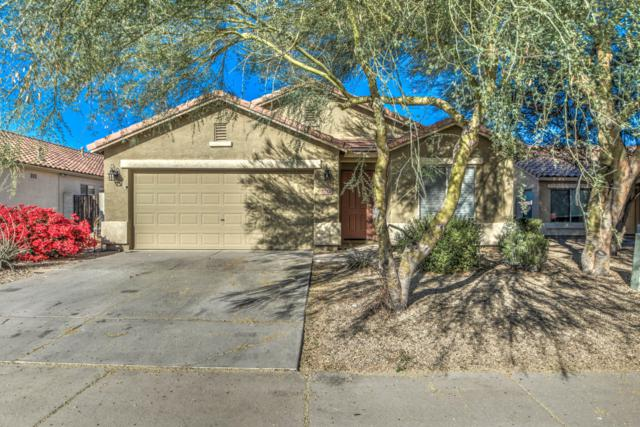 3210 W Tanner Ranch Road, Queen Creek, AZ 85142 (MLS #5865992) :: The Everest Team at My Home Group