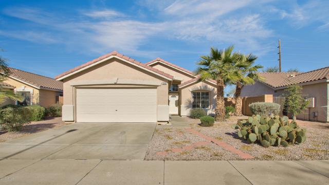 2310 E Derringer Way, Chandler, AZ 85286 (MLS #5865997) :: Kelly Cook Real Estate Group