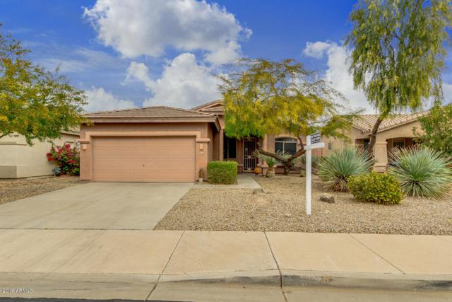 9951 S 183RD Lane, Goodyear, AZ 85338 (MLS #5866014) :: Kortright Group - West USA Realty