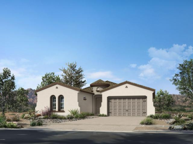 18110 W Hope Drive, Goodyear, AZ 85338 (MLS #5866024) :: The Laughton Team