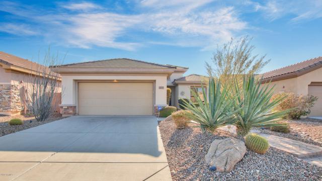 1635 W Dion Drive, Anthem, AZ 85086 (MLS #5866046) :: The Jesse Herfel Real Estate Group