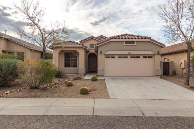 4639 W Rolling Rock Drive, Phoenix, AZ 85086 (MLS #5866054) :: The Pete Dijkstra Team