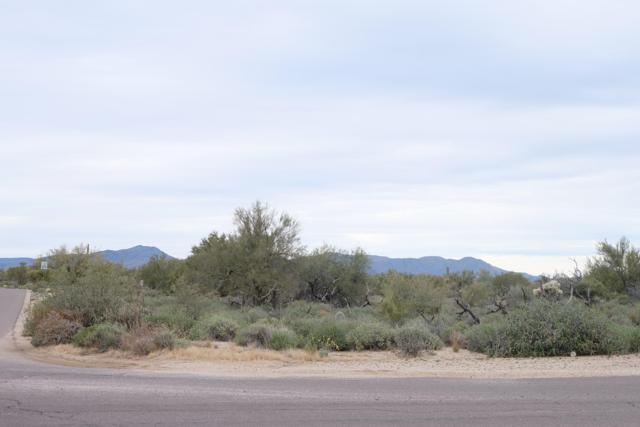 8002 E Lone Mountain Road, Scottsdale, AZ 85266 (MLS #5866112) :: The W Group