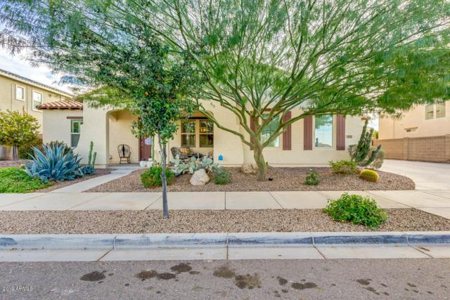 21151 E Via De Arboles, Queen Creek, AZ 85142 (MLS #5866120) :: The W Group
