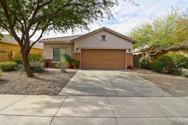 40716 N Boone Lane, Anthem, AZ 85086 (MLS #5866123) :: The Daniel Montez Real Estate Group