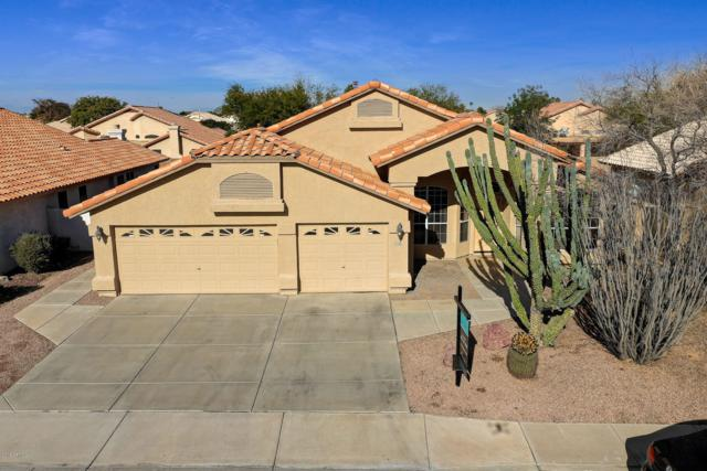 12708 W Lewis Avenue, Avondale, AZ 85392 (MLS #5866168) :: Gilbert Arizona Realty