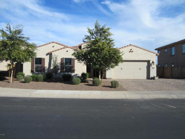 4237 N 180TH Lane, Goodyear, AZ 85395 (MLS #5866172) :: The Everest Team at My Home Group