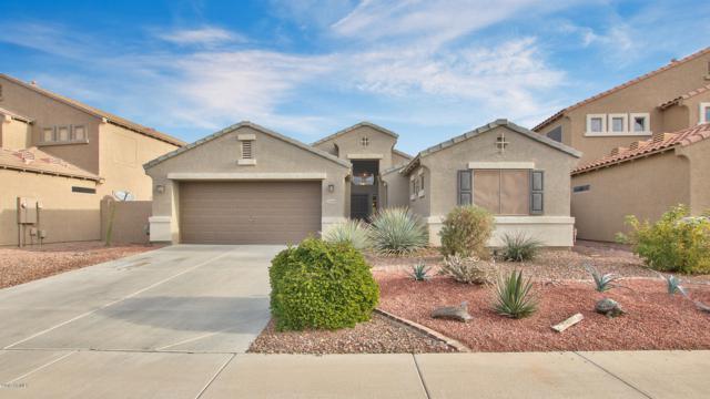 22469 N Vanderveen Way, Maricopa, AZ 85138 (MLS #5866203) :: Yost Realty Group at RE/MAX Casa Grande