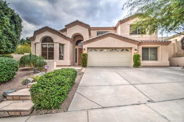 353 E Hiddenview Drive, Phoenix, AZ 85048 (MLS #5866245) :: The Laughton Team