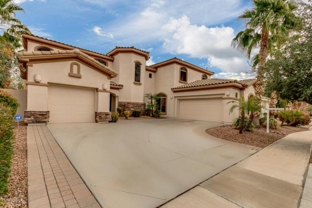 4507 S Roy Rogers Way, Gilbert, AZ 85297 (MLS #5866247) :: The Jesse Herfel Real Estate Group