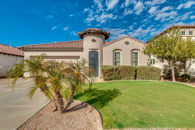 2298 E Wisteria Drive, Chandler, AZ 85286 (MLS #5866277) :: Lifestyle Partners Team