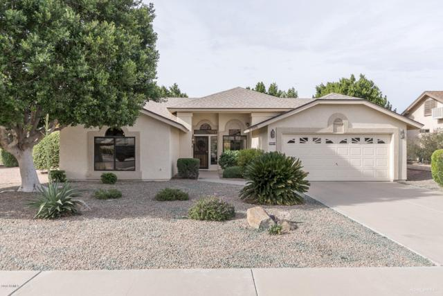 20024 N 98TH Avenue, Peoria, AZ 85382 (MLS #5866280) :: The Everest Team at My Home Group