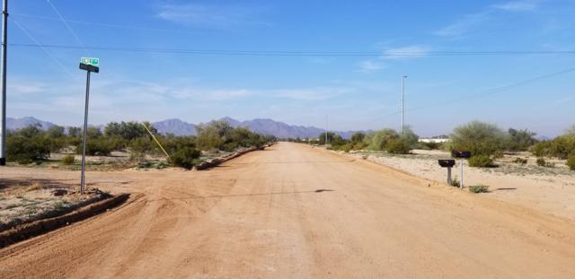 1229 N Emily Lane, Maricopa, AZ 85139 (MLS #5866359) :: Revelation Real Estate