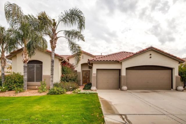 6717 S Crestview Drive, Gilbert, AZ 85298 (MLS #5866391) :: The Jesse Herfel Real Estate Group