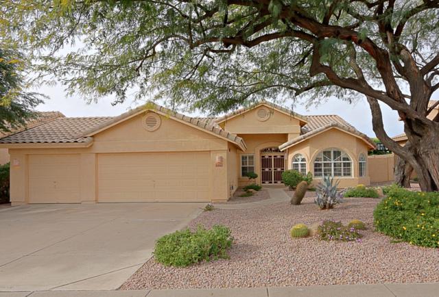 18792 N 93RD Street, Scottsdale, AZ 85255 (MLS #5866401) :: Arizona 1 Real Estate Team