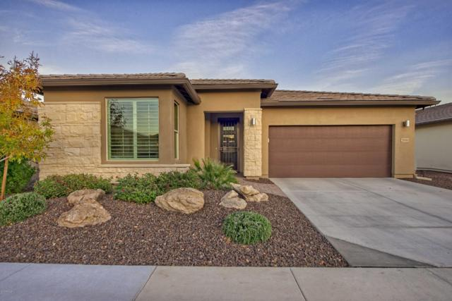 29393 N 132ND Lane, Peoria, AZ 85383 (MLS #5866428) :: The Daniel Montez Real Estate Group
