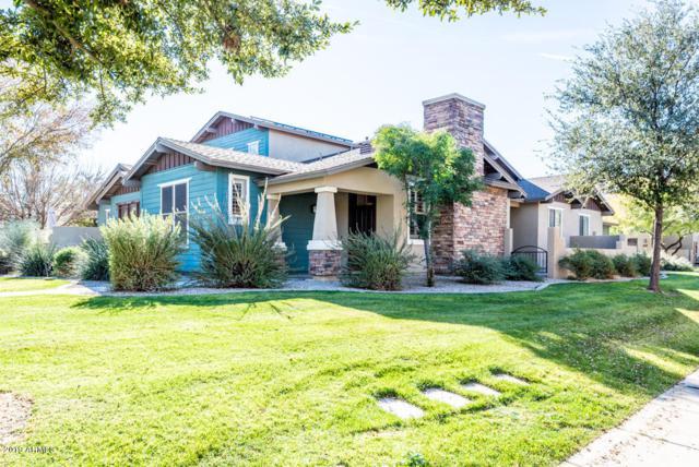 15180 W Andora Street, Surprise, AZ 85379 (MLS #5866460) :: Phoenix Property Group