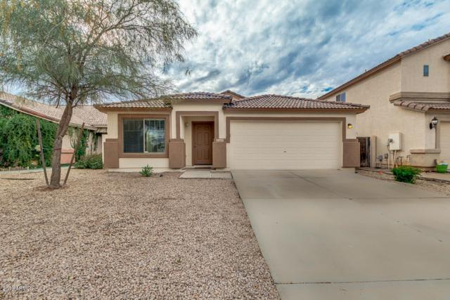 2657 E Cowboy Cove Trail, San Tan Valley, AZ 85143 (MLS #5866471) :: The Property Partners at eXp Realty