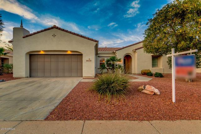 12904 W La Vina Drive, Sun City West, AZ 85375 (MLS #5866482) :: The Laughton Team