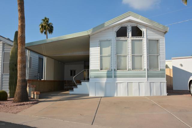 354 W Kiowa Circle, Apache Junction, AZ 85119 (MLS #5866703) :: The Kenny Klaus Team