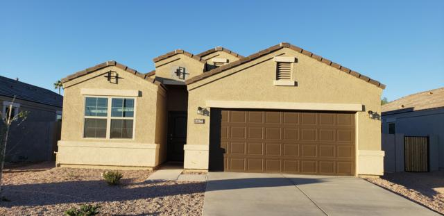 8665 S 257TH Avenue, Buckeye, AZ 85326 (MLS #5866712) :: The Daniel Montez Real Estate Group