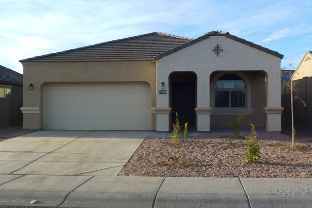 25632 W Allen Street, Buckeye, AZ 85326 (MLS #5866809) :: The Daniel Montez Real Estate Group
