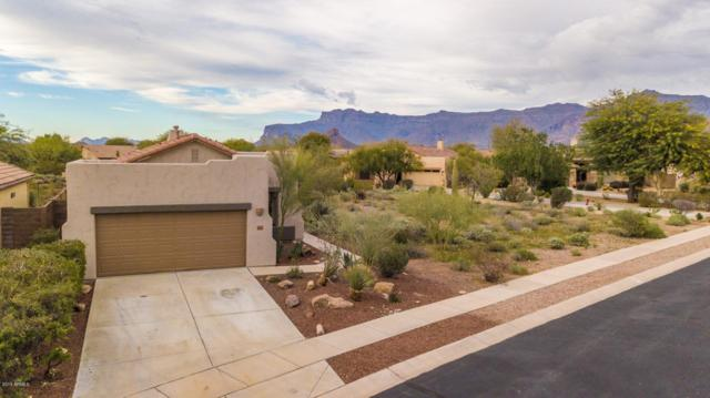 9924 E Desert Trail Lane, Gold Canyon, AZ 85118 (MLS #5866825) :: The Kenny Klaus Team