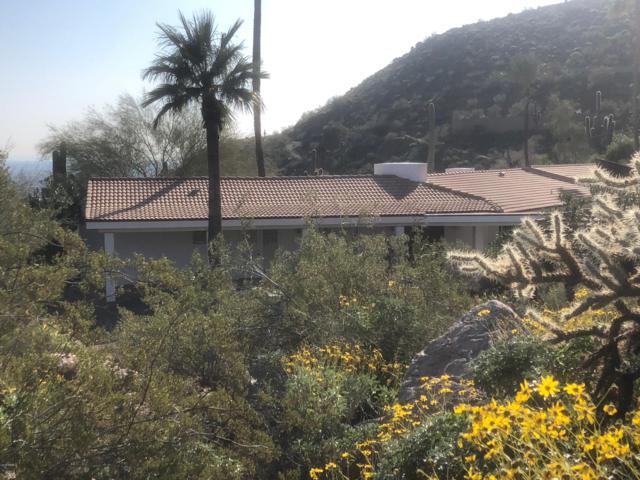 6031 E Cholla Lane, Paradise Valley, AZ 85253 (MLS #5866873) :: The Kenny Klaus Team