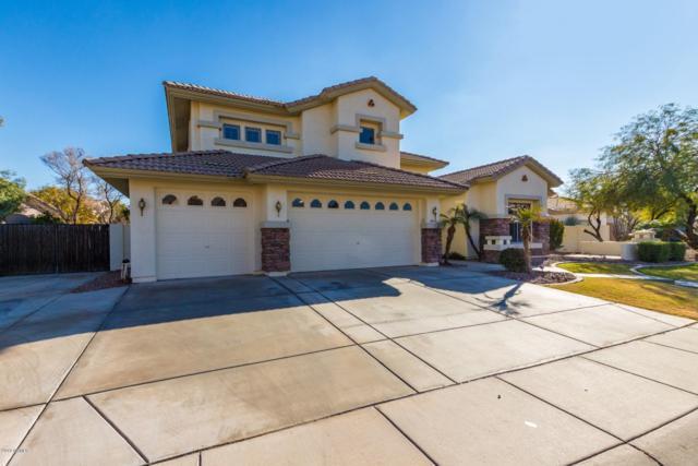 1541 E Indigo Drive, Chandler, AZ 85286 (MLS #5866888) :: Occasio Realty
