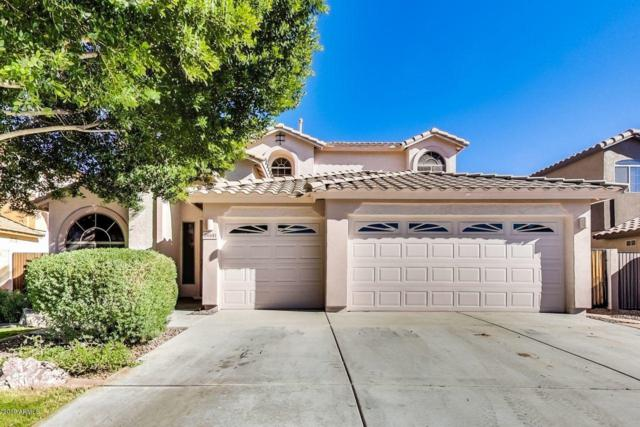 26141 N 67TH Drive, Peoria, AZ 85383 (MLS #5866903) :: The Results Group