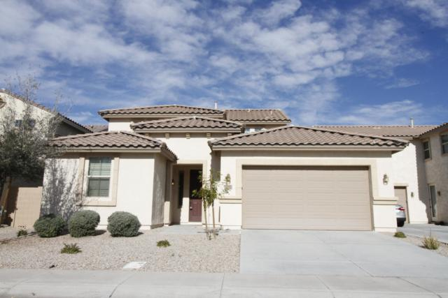 1692 W Homestead Drive, Chandler, AZ 85286 (MLS #5866962) :: Yost Realty Group at RE/MAX Casa Grande