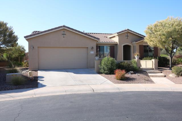 20118 N Brook Lane, Maricopa, AZ 85138 (MLS #5866966) :: Yost Realty Group at RE/MAX Casa Grande