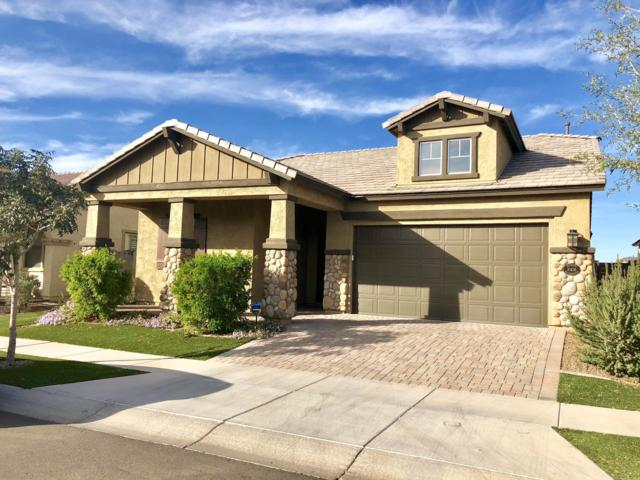 10436 E Monterey Avenue, Mesa, AZ 85209 (MLS #5866998) :: Yost Realty Group at RE/MAX Casa Grande