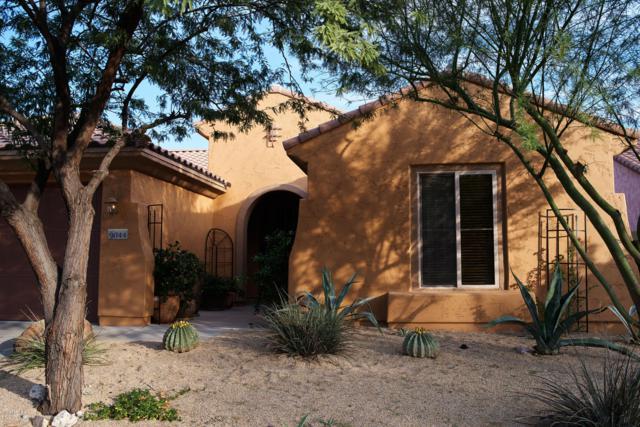 9044 W Quail Track Drive, Peoria, AZ 85383 (MLS #5867000) :: The Laughton Team