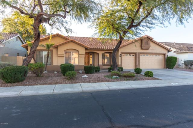 7817 W Maui Lane, Peoria, AZ 85381 (MLS #5867058) :: The Pete Dijkstra Team