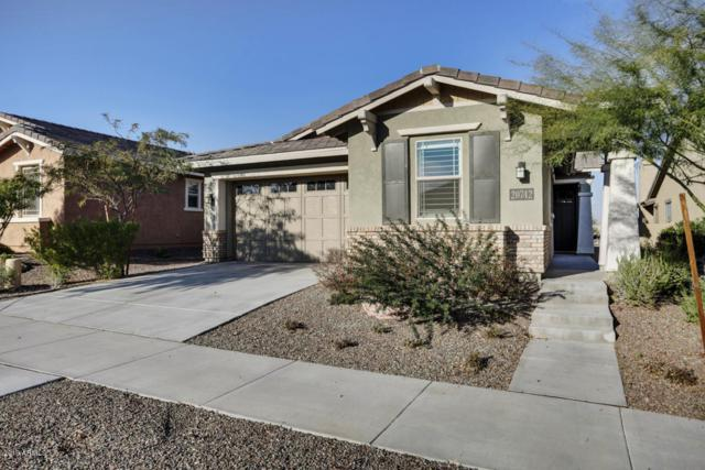 20742 W Hillcrest Boulevard, Buckeye, AZ 85396 (MLS #5867078) :: Arizona 1 Real Estate Team
