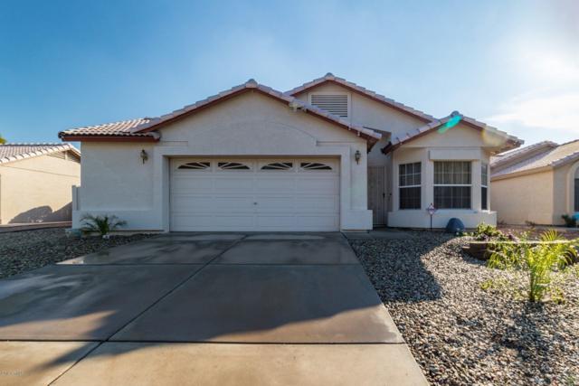 5157 W Pontiac Drive, Glendale, AZ 85308 (MLS #5867096) :: The Garcia Group