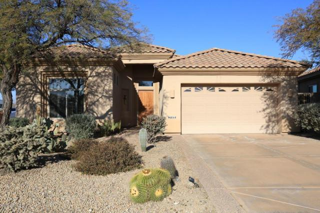 9252 E Whitewing Drive, Scottsdale, AZ 85262 (MLS #5867128) :: Conway Real Estate