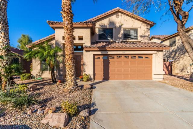 16224 N 160TH Avenue, Surprise, AZ 85374 (MLS #5867137) :: The Daniel Montez Real Estate Group