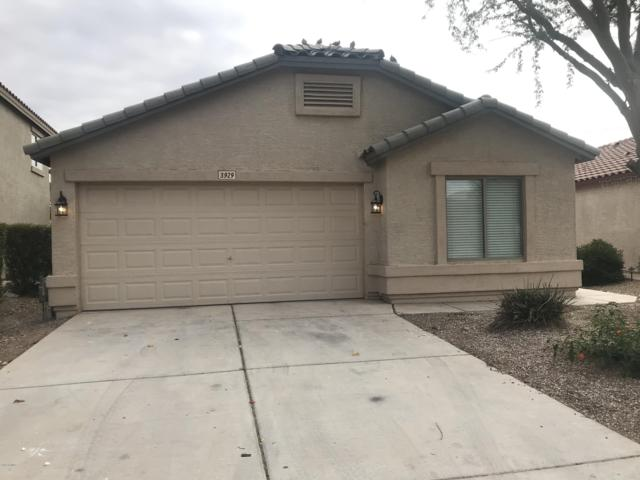 3929 E Rock Drive, San Tan Valley, AZ 85143 (MLS #5867194) :: Yost Realty Group at RE/MAX Casa Grande