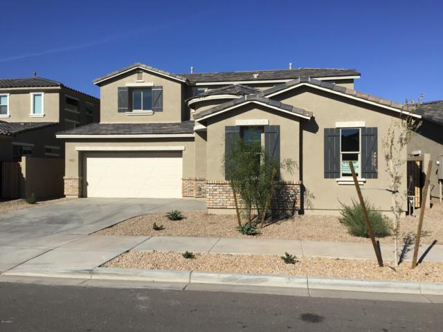 22470 E Stonecrest Drive, Queen Creek, AZ 85142 (MLS #5867221) :: Revelation Real Estate