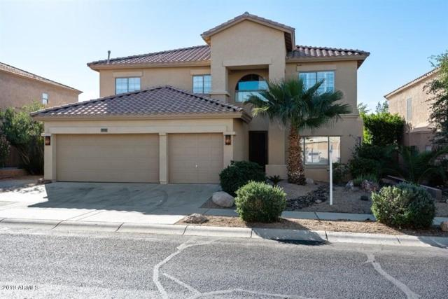 2421 W Night Owl Lane, Phoenix, AZ 85085 (MLS #5867226) :: Revelation Real Estate